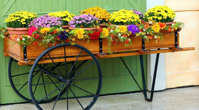 Plantenbak op wielen voor buiten